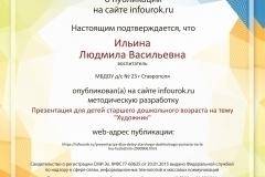 Свидетельство-проекта-infourok.ru-№1570228